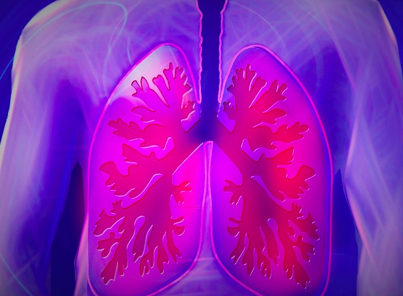 lungs on x-ray machine
